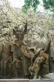 生态餐厅仿真桃花树